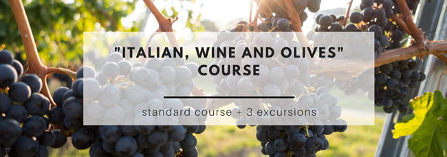 Italian, wine and olives course